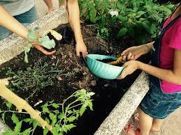 Après-midi RTT jardinage sur le site 16/06